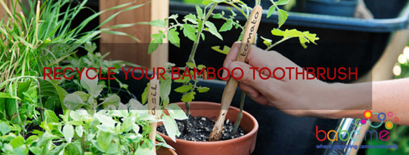 how-to-recycle-bamboo-toothbrush