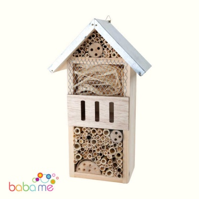 Insects House Selg