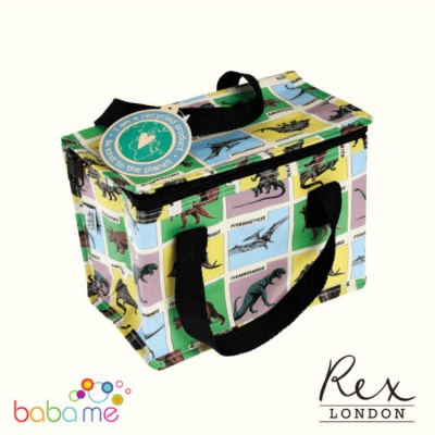 Prehistoric Land Insulated Lunch Cooler Bag