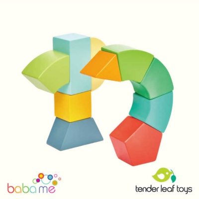 Tender Leaf Primary Magblocs