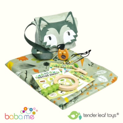 Tender Leaf Toys Forest Trail Kit