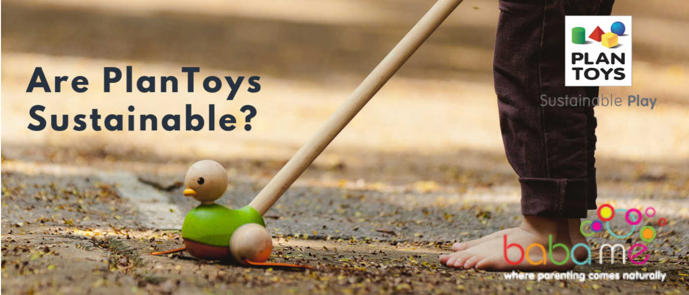 Are PlanToys Sustainable?